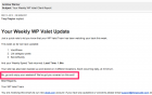 Your_Weekly_WP_Valet_Client_Report-3